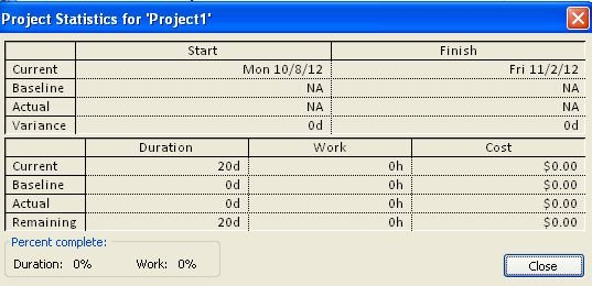 ProjectStatistics-project2010.jpg