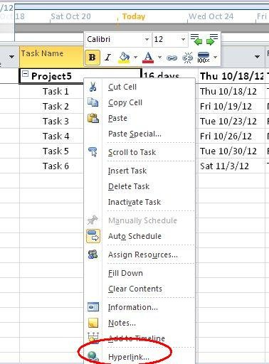 Adding-Hyperlink-to-project-in-project2010.jpg